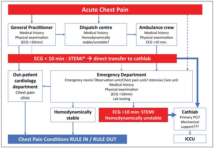 Diagnosis and risk stratification of chest pain patients in the emergency department: